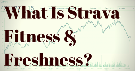 What Is Strava Fitness And Freshness? post image